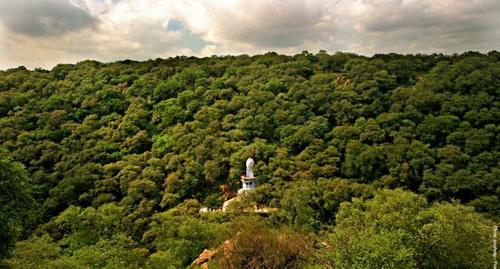 Индийские общины распродают свои холмы, леса, озера и священные рощи