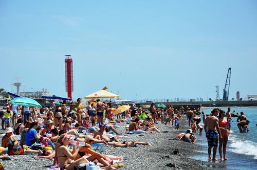 Городской пляж Сочи передали в личное пользование Дмитрия Медведева