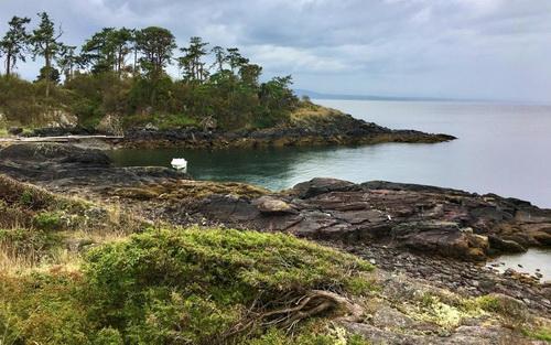 Канадские экологи купили остров за $1,7 млн, чтобы спасти природу от застройщиков